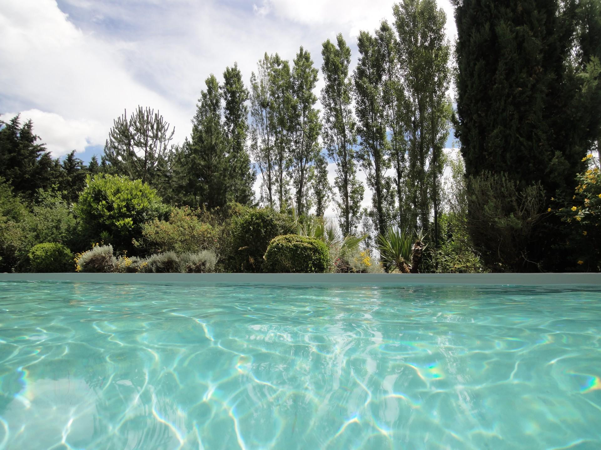 chambre hote piscine albi