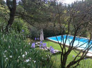 chambre hote piscine jacuzzi albi
